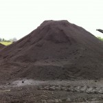 Organic-Cow-Manure-Compost-lg-pile